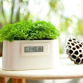 Elegant Creative Plants Conducting Electricity Design Table Clock