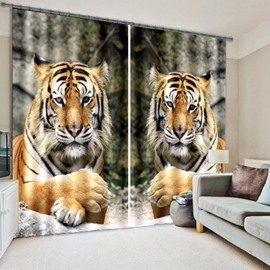 3D Cute Tigers Lying on the Stone Printed Animal Style Custom Curtain for Living Room