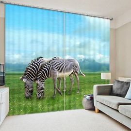 3D Couple Zebras on the Grassland Printed 2 Panels Dust-Proof and Blackout Curtain