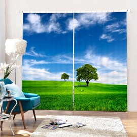 A Tree in Blue Sky and Green Grass Printing 3D Curtain