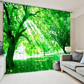 3D Printed Bright Sunshine and Green Leaves Natural Style Polyester Curtain Roller Shades