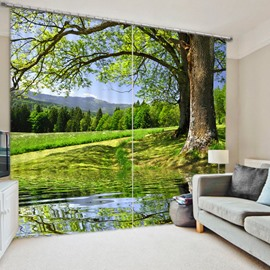 3D Green Fields and Peaceful River with Tall Trees Printed Summery Scenery Decorative 3D Curtain