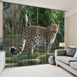 Lovely and Fierce Leopard Jaguar Living Room and Study Decorative 3D Curtain
