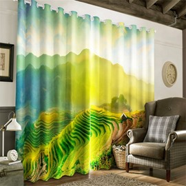 3D Green Terrace Fields and Soft Sunlight Printed 2 Panels Decorative and Blackout Curtain