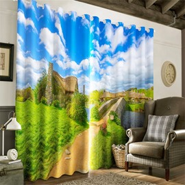 3D Verdant Grassland and Stone Bridge with Blue Sky Printed Living Room Window Curtain