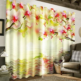3D Pink Peach Flowers and Limpid Water Printed 2 Panels Custom Living Room Curtain