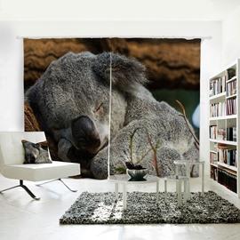 Lovely Sleeping Koala Pattern 3D Animal Painted Polyester Curtain
