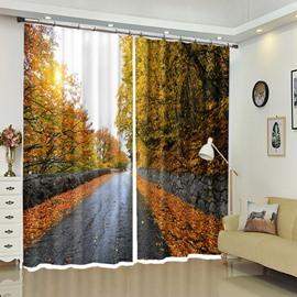 Deep Autumn Sky Above Stone Leaf-road Scenery 3D Curtain