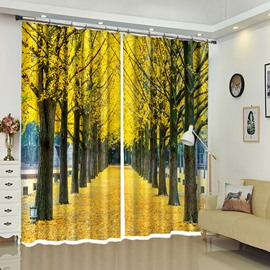 Straight Road Under Golden Leaves Landscape Window Curtains
