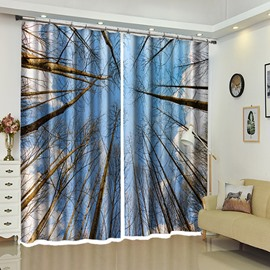 Treetop of Forest In Winter Blue Sky Scene-printed Curtain