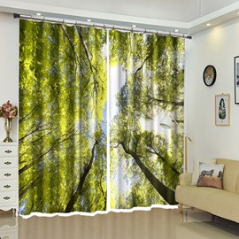 Green Leaves Above Tree Scene Decorative Curtain/ Blackout