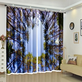 Circle Round Shaped by Treetops Trees Scene 3D Curtain