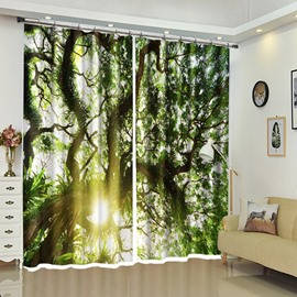 Twisted Branches in Tropical Area Green Trees View Curtain