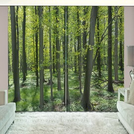 Forest Pathway and Grass Natural Wilderness Scene Print Curtain for Guestroom