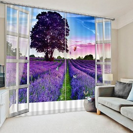 Beddinginn Decoration Curtain Creative Curtains/Window Screens