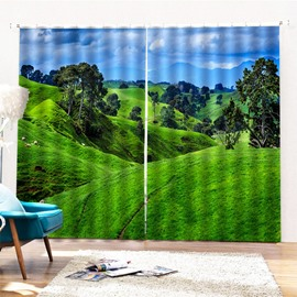 Beddinginn Pastoral Landscape Ultraviolet-Proof Curtains/Window Screens
