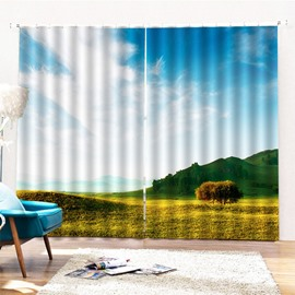 Beddinginn Modern 3D Sky Decoration Curtains/Window Screens