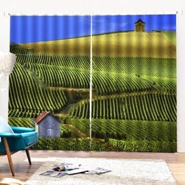 Beddinginn Decoration Landscape Pastoral Curtains/Window Screens