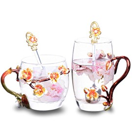 Fashion and Modern Elegant Enamel Glass Home and Office Cups for Lovers