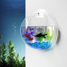 Creative Acrylic Wall Flower Vase Mini Fish Bowl Green Plants Terrarium