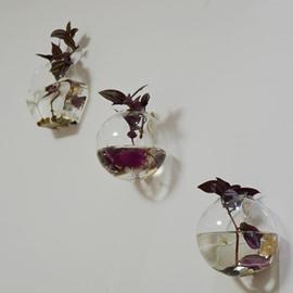 Creative Glass 1-Piece Wall Flower Vase