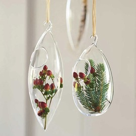 Modern and Concise Exquisite Home Decorative Glass Hanging Terrarium