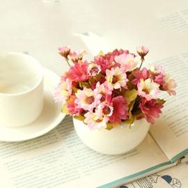Lovely 4-Color Daisies in Porcelain Pot Desktop Decoration Flower Sets