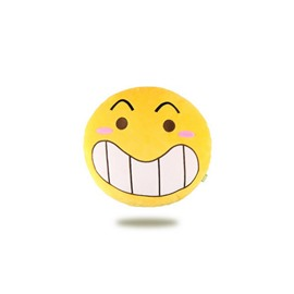 Grin Expressions Funny Car Pillow