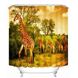 A Group of Giraffe on the Grassland Print 3D Bathroom Shower Curtain
