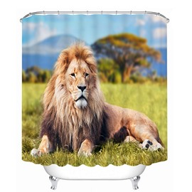 Vivid Majestic Lion Lying on the Grassland Print 3D Bathroom Shower Curtain