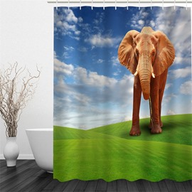 3D Elephant on Green Lawn Polyester Waterproof Antibacterial and Eco-friendly Shower Curtain