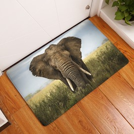 16×24in Elephant in Field Flannel Water Absorption Soft and Nonslip Bath Rug/Mat
