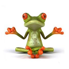 The Yoga Frog Style Car Sticker