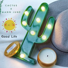 Green Cactus AA-Battery Circle Lighting Decorative LED Lamp
