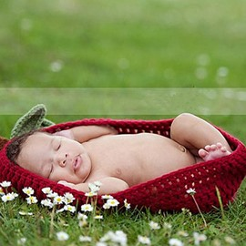 Red Apple Design Knit Baby Cloth Photo Prop
