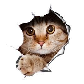 Super Cute Vivid Little Cat Pattern Removable 3D Wall Sticker