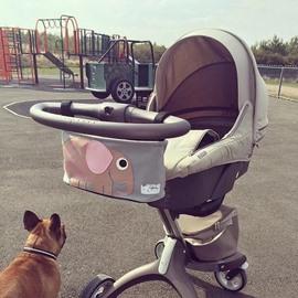 Cartoon Pattern Stroller Organizer Baby Car Decor