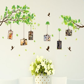 Green Tree 6 Photo Frames and Birds Waterproof and Environmental Wall Stickers