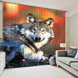 Lovely Wolf Staring at the Front Printed 3D Polyester Curtain