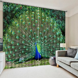 Peacock Spreading the Tail Printed 3D Polyester Curtain