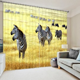 Zebras in the Vast Prairie Polyester Materials Decorative and Blackout 3D Curtain