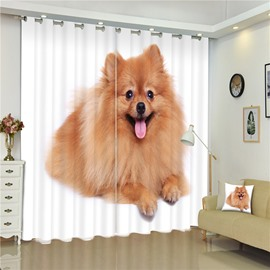 3D Adorable Pomeranian Dog Printed Lovely Pet Dog 2 Panels Decorative and Shading Curtain