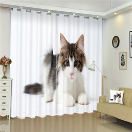 Lovely Lying Cat Thick Polyester Living Room and Bedroom Dust-Proof and Shading Custom Curtain