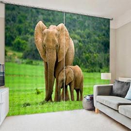 Elephants in Wild Animal Family Vivid Blackout 2 Panels Curtain