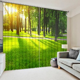 3D Green Trees and Bright Sunlight Printed Vivid Pattern 2 Panels Blackout Curtain