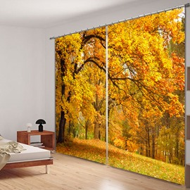 Beautiful Autumn Scene Polyester Printed 2 Panels Decorative Custom 3D Curtain