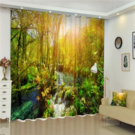 Attractive and Wild Forest and Flowing River with Rising Sun 3D Living Room Curain