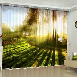 3D Green Fields and Bright Sunlight Printed 2 Panels Grommet Top Curtain