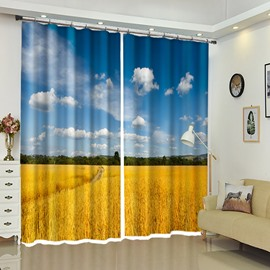 Blue Sky And Golden Rye Natural Color Contrast Decor 3D Curtain