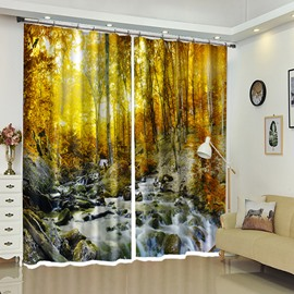 Stream River By The Rocks In Forest 3D Drapes